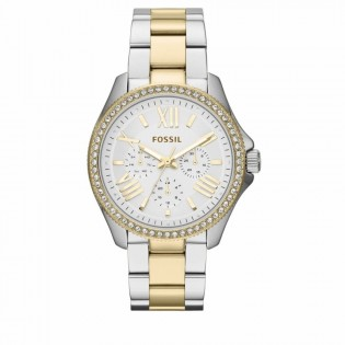 Fossil AM4543 Women's Cecile Multifunction 2 Tone Steel Watch